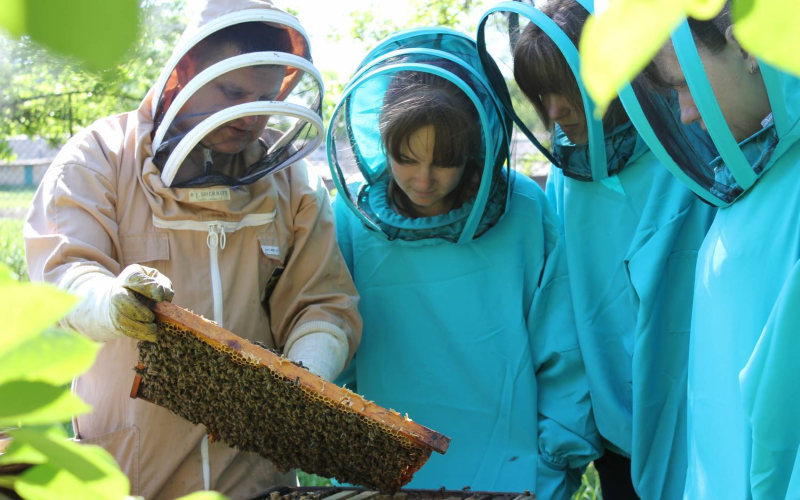 Наші пропозиції для бджільництва